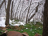 Zion National Park : Most recently we were treated to an unusually large spring snow storm early in 2006.